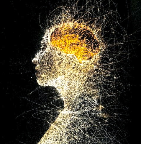 (English) Metta Blog 14: Working with Our Emotions in Meditation